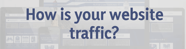 How is your website traffic